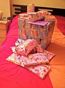 Le célèbre papier cadeau princesses Disney de Vegeta